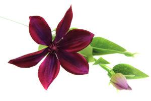 Sztuczne kwiaty wyrobowe